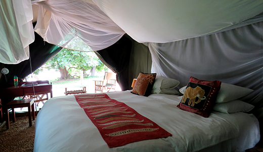 Safari Camp River Front Tent