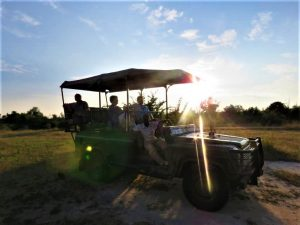 South Luangwa Game Drive Sunse