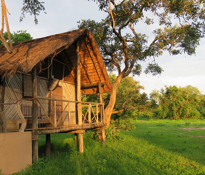 Chalet Safari Accommodation South Luangwa