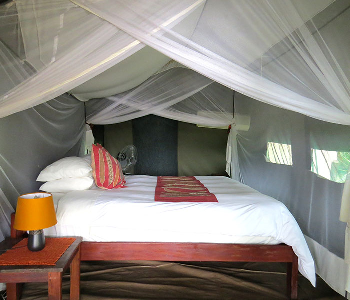 River Tent Bed South Luangwa