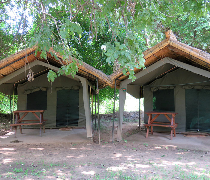 Eco Tents Safari Camp Accommodation