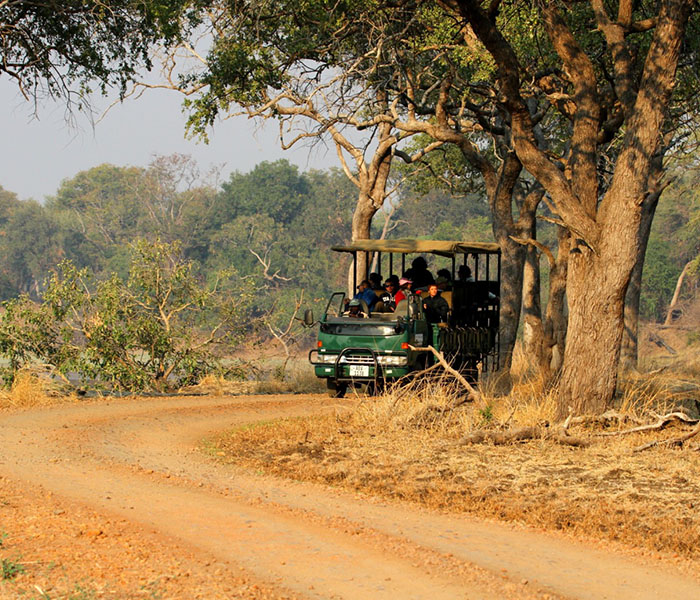 Game Drive South Luangwa
