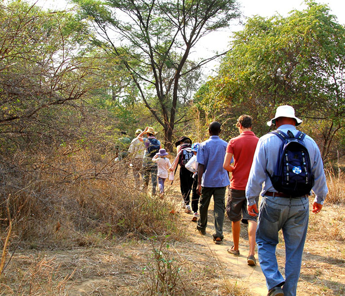 Walking Safari South Luangwa
