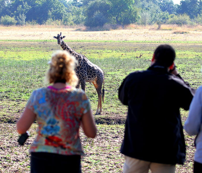 Walking Safaris South Luangwa Zambia