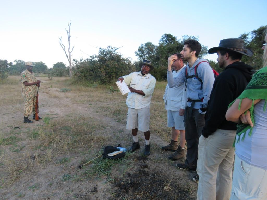 Walking Safari Guide