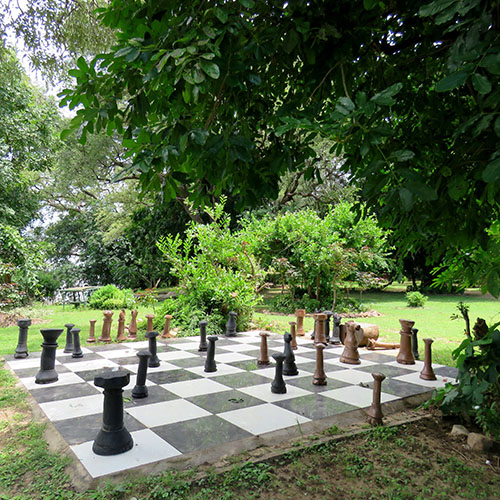 Chess Board Croc Valley