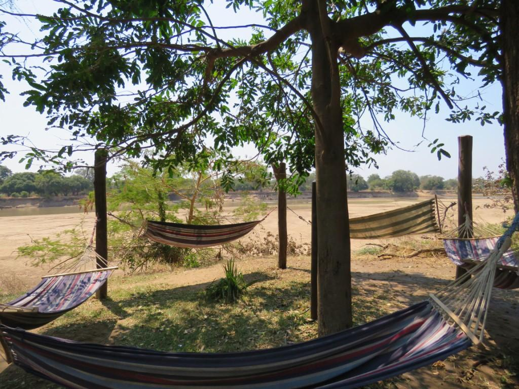 Croc Valley Camp Hammocks