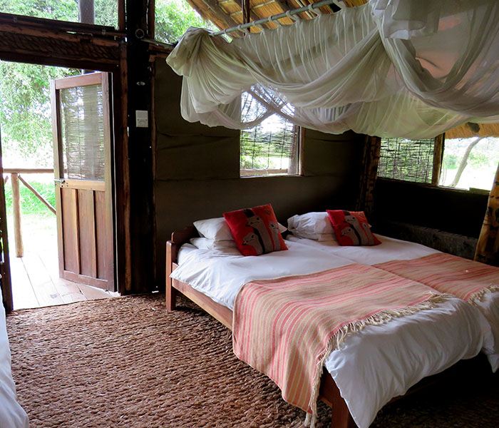 Safari Accommodation Chalet