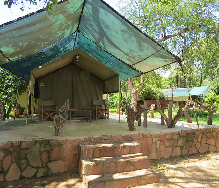 Safari Accommodation South Luangwa River Tent Veranda