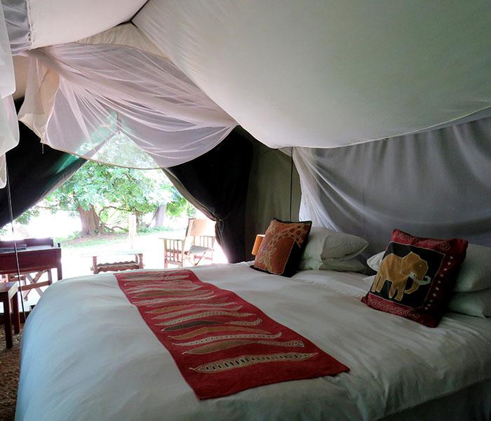 Safari Accommodation South Luangwa River Tent