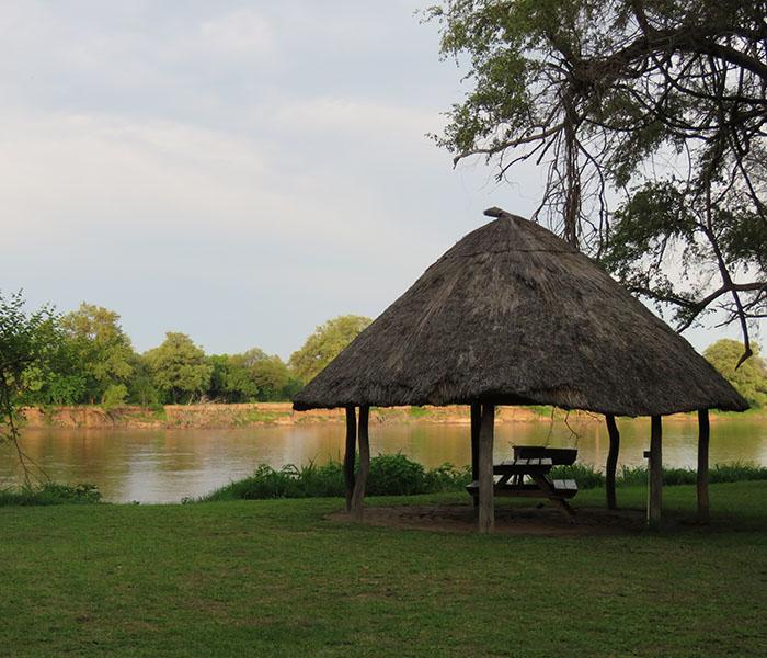 Safari Camp Camping