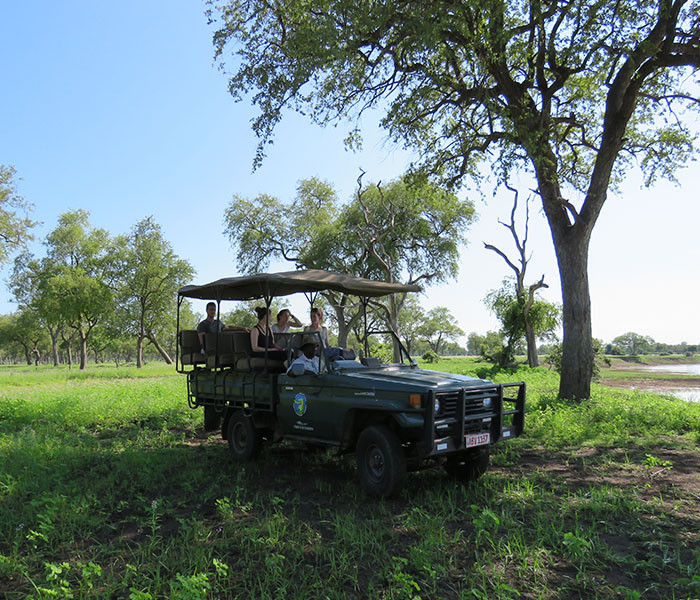 Game Drive Green Season
