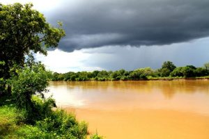 Luangwa River Rainy Season