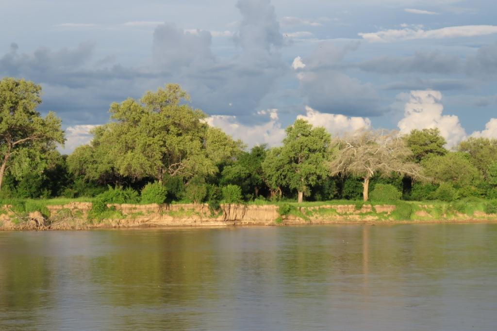 Luangwa River Green Season
