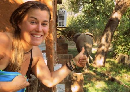 Volunteering Croc Valley Camp